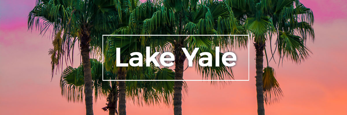 Lake Yale Florida Map.Camp At Lake Yale Baptist Conference Center Leesburg Florida